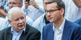 PiS idzie po zwycięstwo. Nowy sondaż