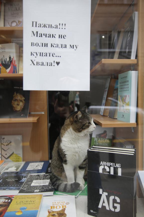 Srećko voli sve knjige, bez izuzetka.