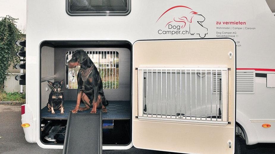 Legowiska dla psów w Dog Camper znajdują się także w tylnej części kampera, pod łóżkiem ich właścicieli (po lewej) i w luku bagażowym, który wyposażono dla komfortu zwierząt w rampę do wchodzenia i wychodzenia z pojazdu.