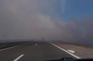 VOZAČI OPREZ: Zapaljeno rastinje pored puta pravi gust dim i donosi rizik na saobraćajnicama!