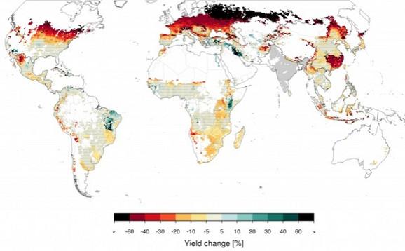 Jegermajerova grafika predstavlja prosečnu promenu u proizvodnji kukuruza u periodu od pet godina nakon nuklearnog sukoba između