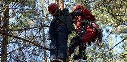 Strażacy ćwiczyli na drzewach