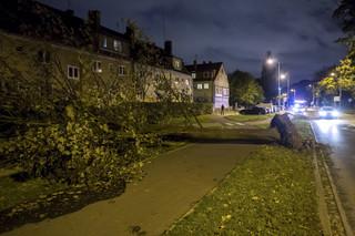 Tragiczne skutki wichur nad Polską: Dwie osoby nie żyją, tysiące ludzi bez prądu, wiele zniszczeń