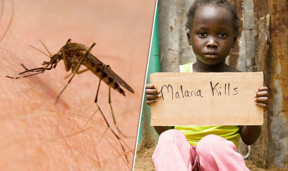 The simple guide to understanding cerebral Malaria