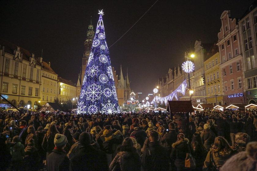 Choinka we Wrocławiu