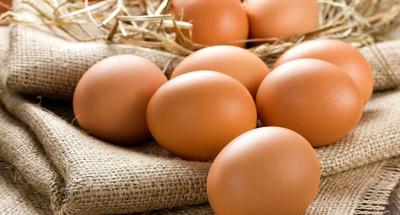 erekcja jajka przepiórcza dlaczego członek wzrasta z erekcją