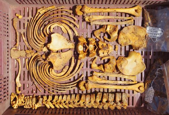 Nađeni kosturi otkrivaju mračne tajne građenja Amarne