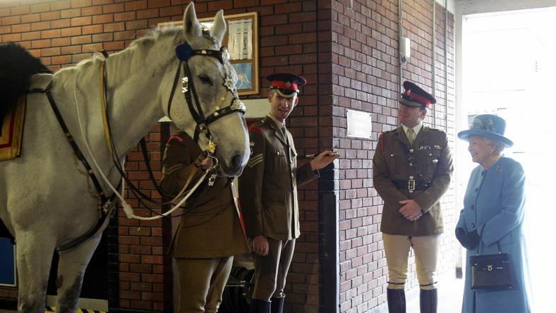 Brytyjska królowa znana jest ze swojego zamiłowania do koni