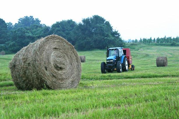 Polska od dawna upomina się o wyrównanie dotacji unijnych dla rolników w UE. Dziś bardzo się one różnią, bo są oparte na historycznych, referencyjnych danych o produkcji z 2000 i 2002 roku.