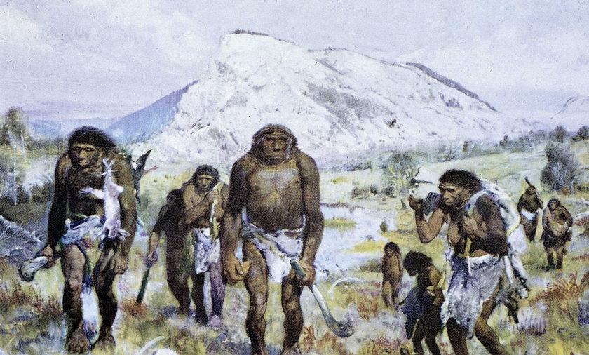Historyczne odkrycie na Śląsku