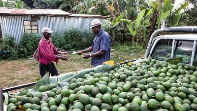 Uganda retains position as Kenya's top export market in 2020 - report