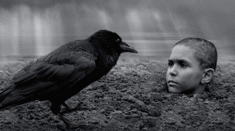 """""""Malowany ptak"""" wzbudza wielkie kontrowersje"""