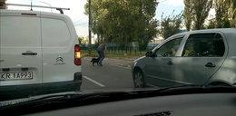 Wzruszający gest kierowcy z Krakowa. Zablokował ruch, żeby to zrobić