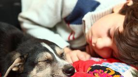 Dzieci, zwierzęta i OBE