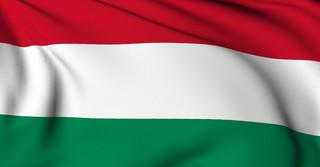 Zapewniali bezpieczeństwo ambasady Holandii. 26 Węgrów czeka na wywiezienie z Kabulu