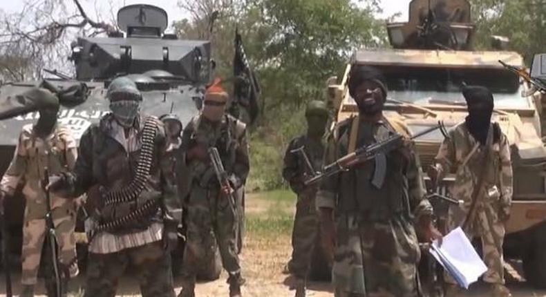 Boko Haram insurgents slaughters over 40 rice farmers in Borno. (ICIRNigeria)