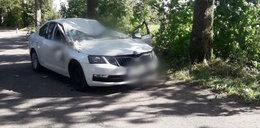 Wichura pod Olsztynem. Na samochód spadło drzewo. Nie żyje kierowca