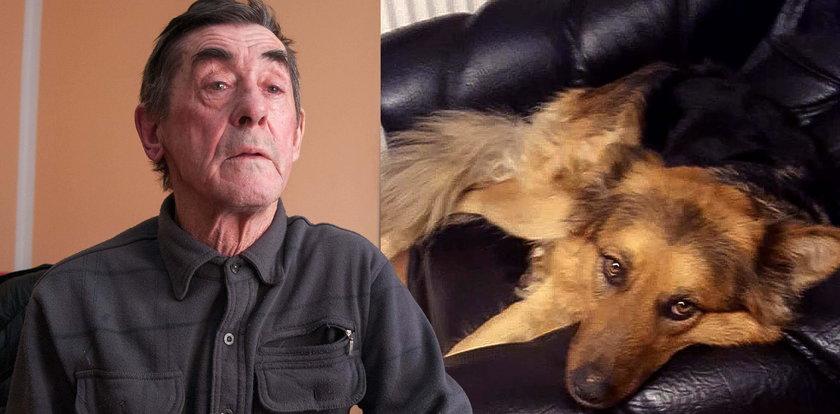 W jednej chwili stracił ukochanego psa: Moją Lusię zastrzelił myśliwy bez serca