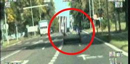 Pirat drogowy szalał pod szkołą. Wideo