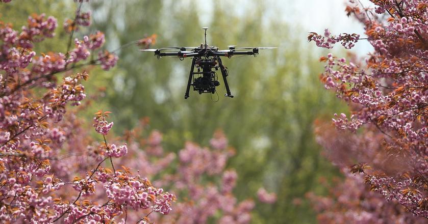 Technologia w obronie planety i środowiska