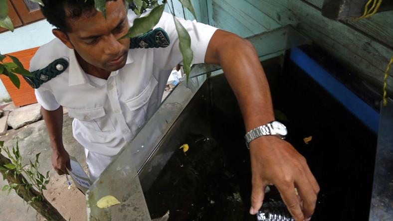 Colombo, stolica Sri Lanki. Inspektor zdrowia publicznego sprawdza, czy pod powierzchnią wody nie znajdują się larwy moskitów przenoszących dengę
