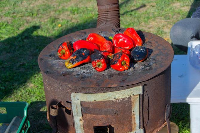 Domaćice kažu da od ove paprike nastaje najbolji ajvar
