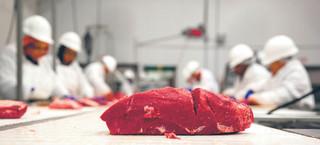 Zakłady Mięsne Henryk Kania mają kłopoty, giełda na tym traci