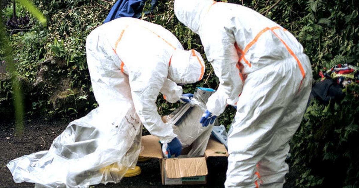Gombe state records first Coronavirus death [ARTICLE] - Pulse Nigeria
