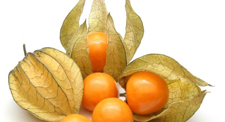golden berries(southseedbank)
