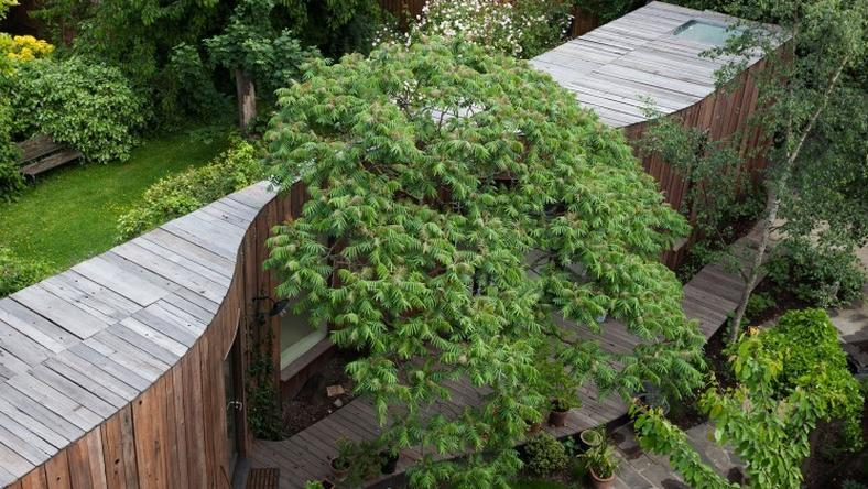 53025dcb0a2c5_tree-house-5322-copy-6a-architects