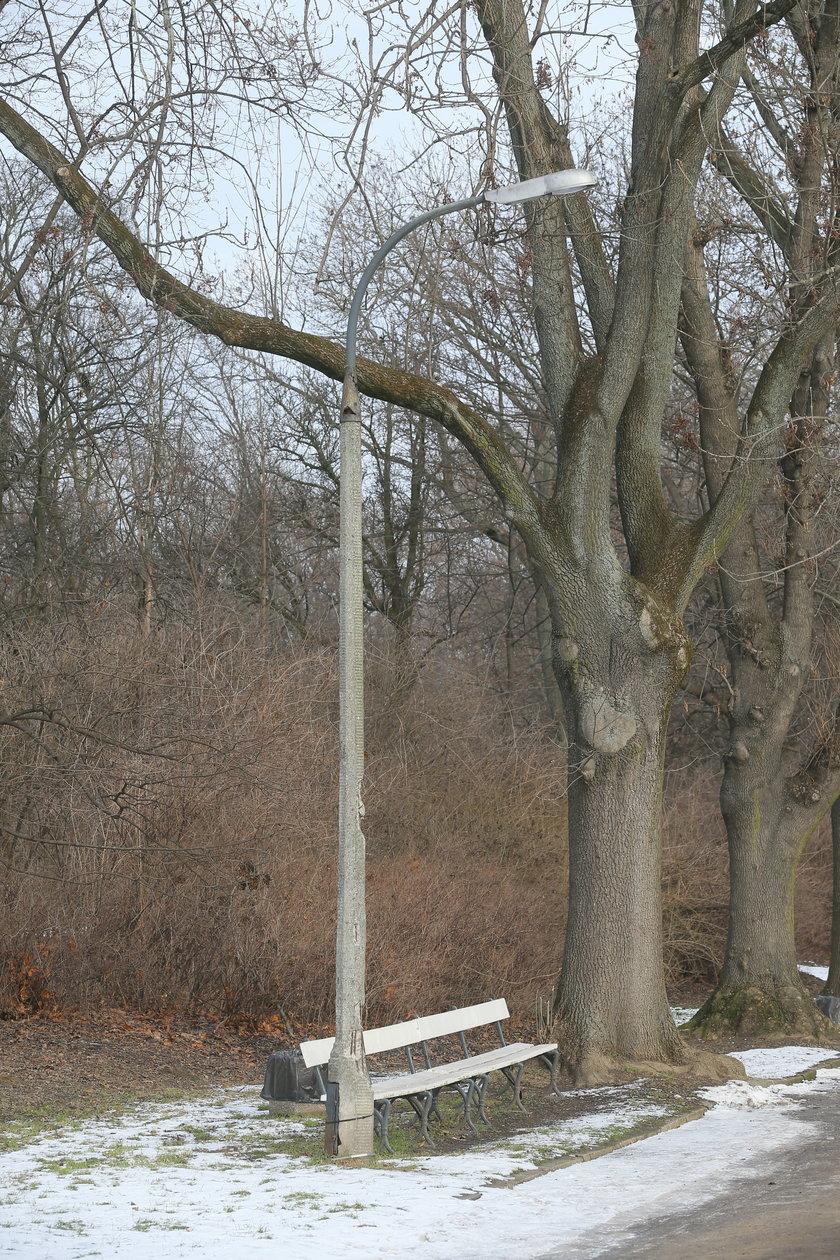 Parkowe latarnie są zniszczone
