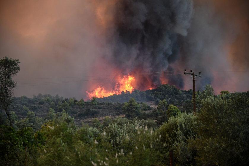 Pożar szaleje na greckiej wyspie Kefalonia