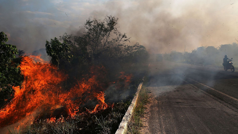 A fire burns along a highway in a deforested section of the Amazon basin on November 23, 2014 in Ze Doca, Brazil.