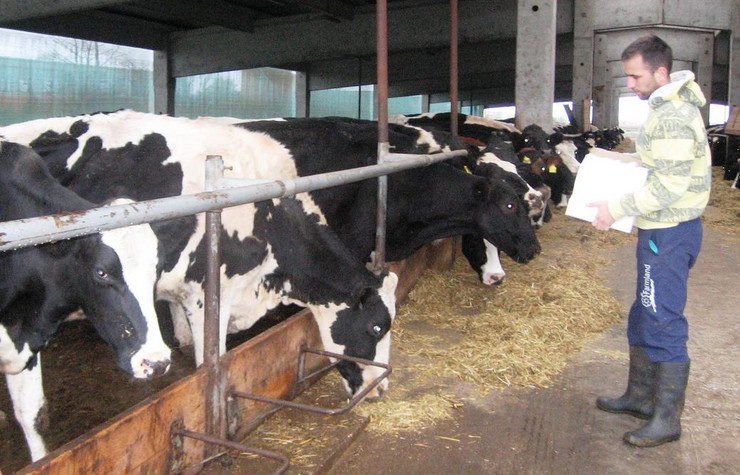 Farmland Nova Topola