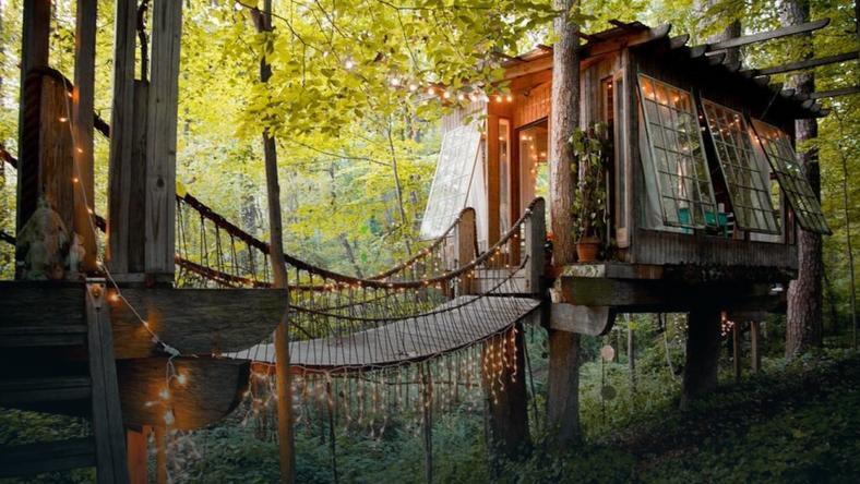 Domek na drzewie jest hitem na portalu Airbnb