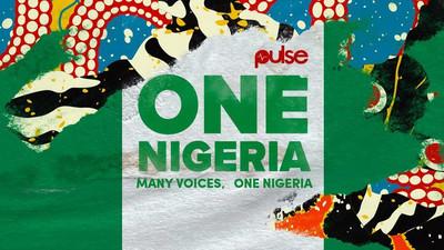 Nigeria diversity shines bright for Independence Day through #OneNigeria Hashtag Challenge