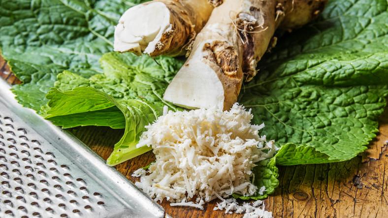 Właściwości chrzanu docenili już starożytni Rzymianie i Egipcjanie. Dopiero w IX wieku jego walory zaczęli dostrzegać mieszkańcy Europy Zachodniej i Wschodniej. Szczególne znaczenie odgrywały wówczas liście chrzanu (mające nawet 1,5 metra długości!), które zabezpieczały żywność przed zepsuciem. Używano ich także do okładania osełek masła, a także jako podkładek pod pieczony chleb. W XIX wieku jego smak i prozdrowotne właściwości docenił cesarz Austrii, Franciszek Józef. Do jego ulubionych dań należała gotowana w warzywach wołowina, do której przyrządzano specjalny sos z duszonych na maśle jabłek, białego wina, cukru i chrzanu. Warto podkreślić, że cesarz prawie nigdy nie chorował i przeżył blisko 90 lat. Nie wiadomo dokładnie kiedy chrzan przybył do Polski. Pierwotnie rósł dziko i był uważany za chwast. Obecnie jest uprawiany na działkach i w ogrodach. Spotkamy go już nie tylko w Europie, ale także w Ameryce Północnej, Azji czy Australii. CIEKAWOSTKA: We Francji, Szwajcarii oraz Holandii korzeń chrzanu oficjalnie jest uznawany za lek. W Polsce występuje głównie jako przyprawa.