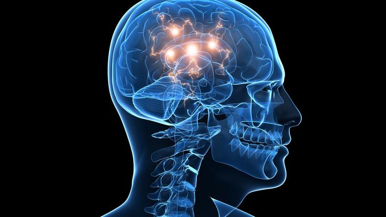 Przeszczep komórek mózgowych szansą na wyleczenie padaczki?
