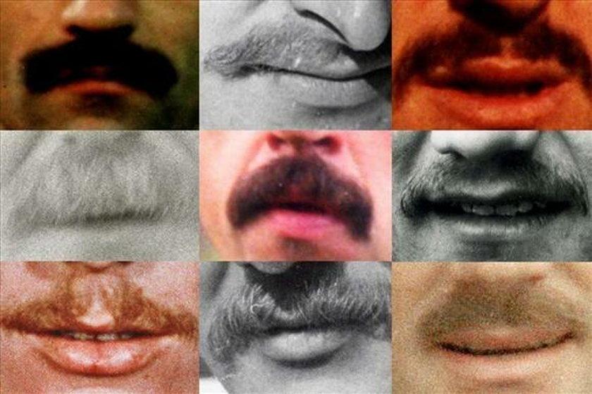 Wąsy różnią się od siebie