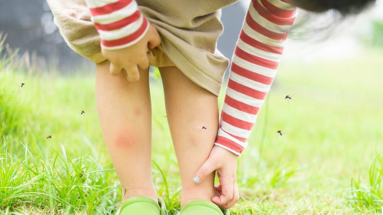 Ukąszenia owadów