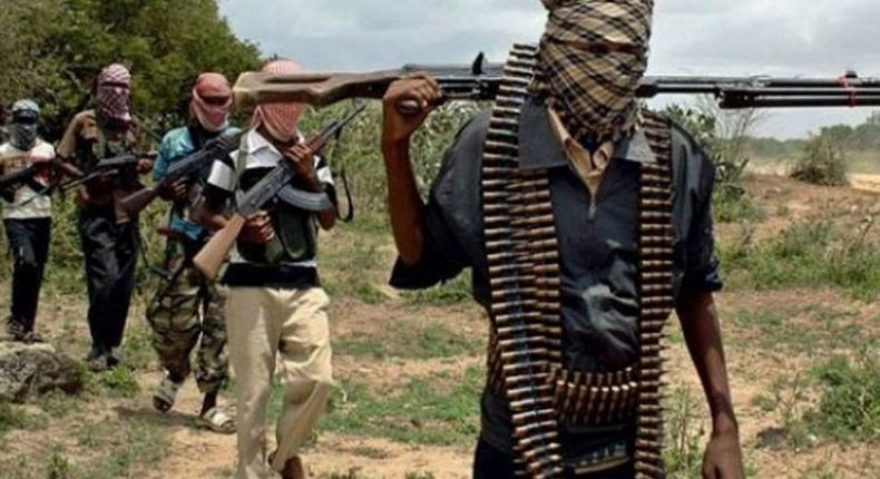 Bandits kidnap 17 persons in Niger state on Saturday, January 16, 2021 (TheNation)