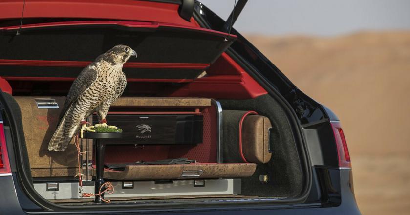 Bentley Bentayga Falconry to samochód przygotowany z myślą o sokolnikach