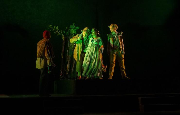 NIS predstava Kako vam drago bice premijerno izvedena na Nisvil dzez teatru foto Nenad Petrovic