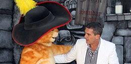 Banderas spotkał kota w butach