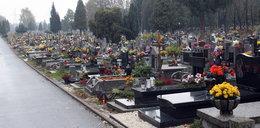 W Krakowie powstaje nowy cmentarz komunalny