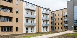 W Chorzowie powstało 77 mieszkań komunalnych. 16 z nich zajmą seniorzy. Dziś rusza nabór  wniosków