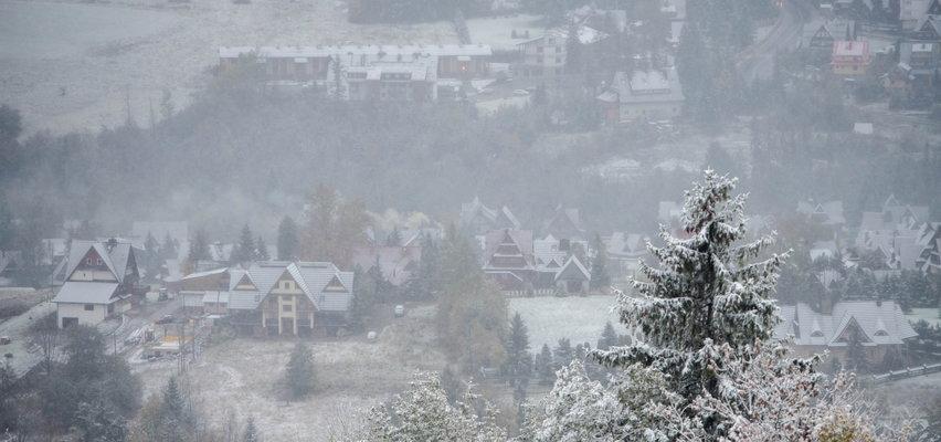 W Zakopanem biało! W nocy spadł pierwszy śnieg i ma go być jeszcze więcej. Nawet 20 cm