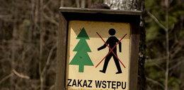 Koronawirus w Polsce. Jest zakaz wstępu do niektórych lasów