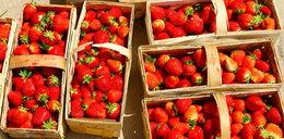 Możesz jeść polskie truskawki do września!