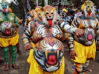 Performers painted to look like tigers dance during festivities marking the start of the annual harv